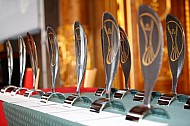 2015 World Paddle Awards